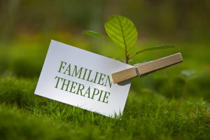 Blog Paarconsulting Familientherapie